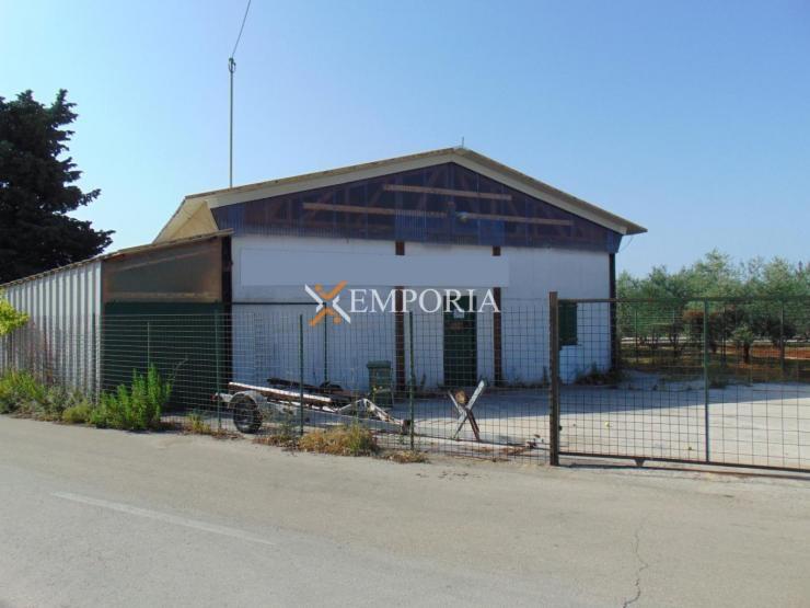 Business property B121 – Zadar, Ričine